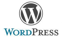 WordPress Mi Kullanıyor Nasıl Öğrenilir ?