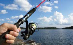 Olta ile Balık Avı Nasıl Yapılır
