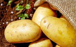 Patates Çimlenmemesi İçin Ne Yapılmalı