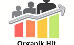 Organik Hit, Organik Ziyaretçi Nedir ? Nasıl Arttırılır ?