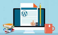 Web Sitesi Nedir, Nasıl Yapılır ?