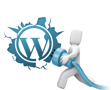 wordpress hit eklentileri