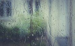 Pencere Kenarından Su Geliyor